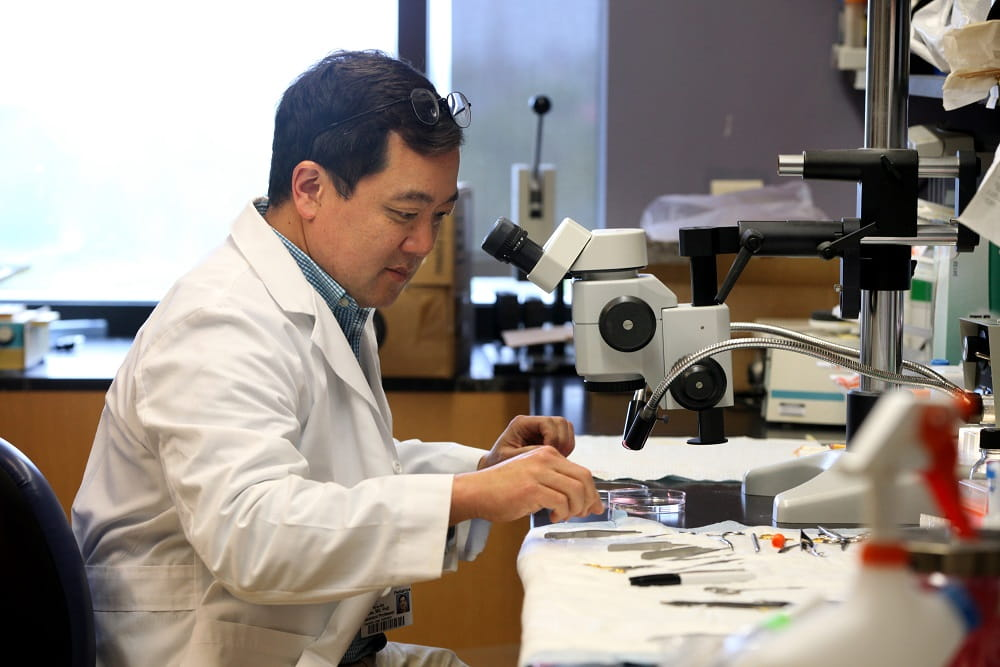 MUSC researcher Dr. Kyu-Ho Lee in his laboratory